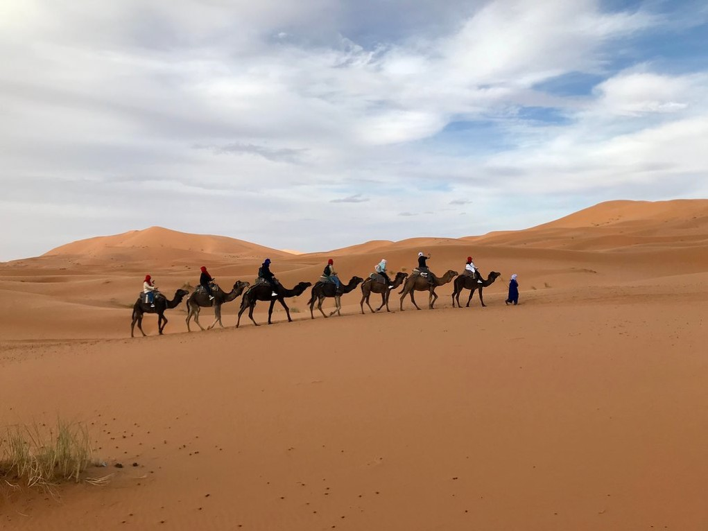 Tours Casablanca into Morocco