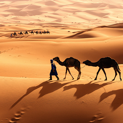3 Nights camel ride in Merzouga Sand dunes