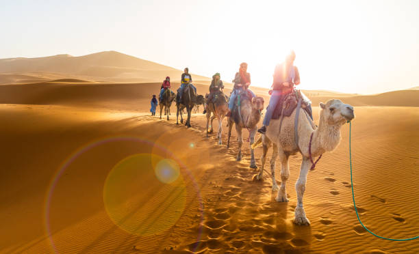 Shared 3 days Marrakech desert