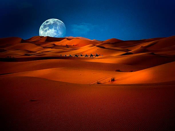 one night camel trekking merzouga